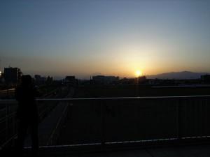 漢方 紫雲 夕日